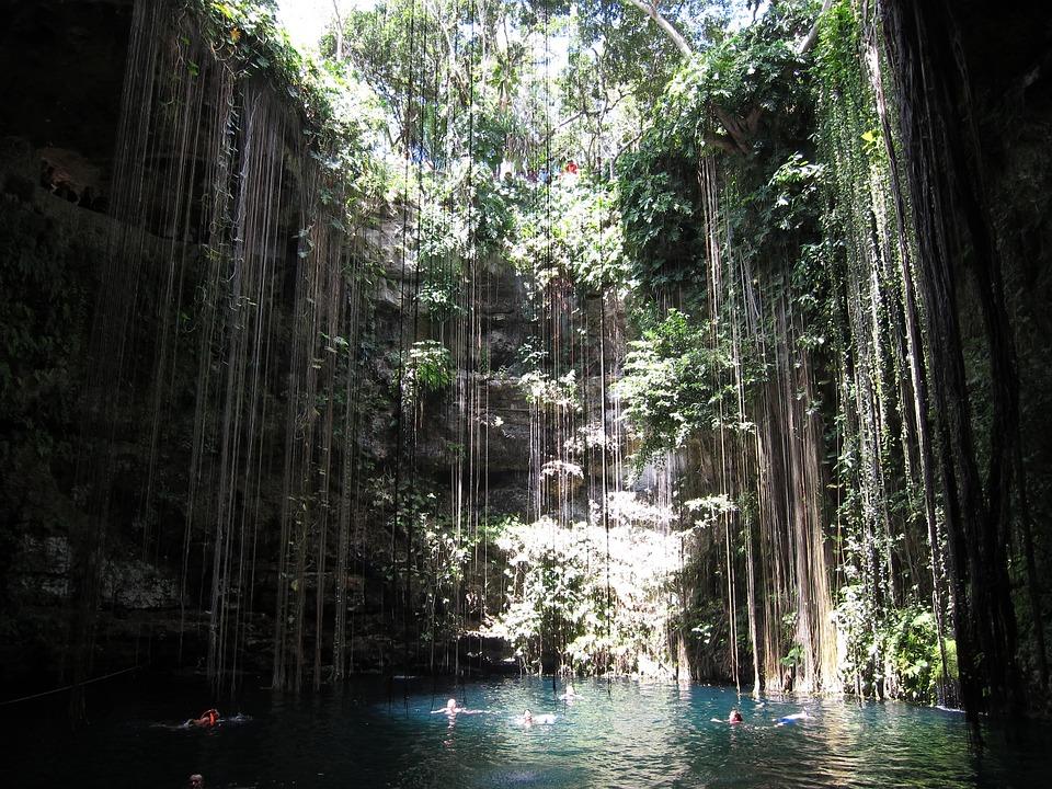 Cancun, Pool, Jungle, Natural, Yucatan, Mexico