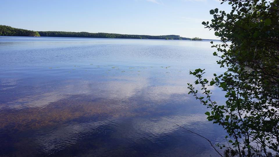 Finnish, Lake, Beach, Summer, Midsummer, High Summer