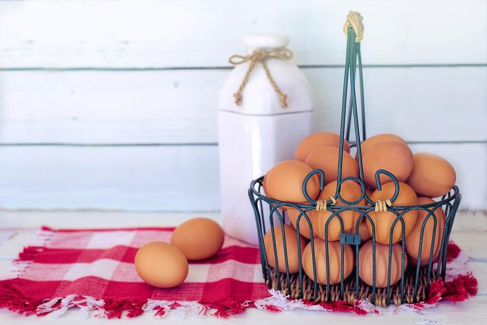 Brown Eggs, Milk, Breakfast, Nutrition, White Space