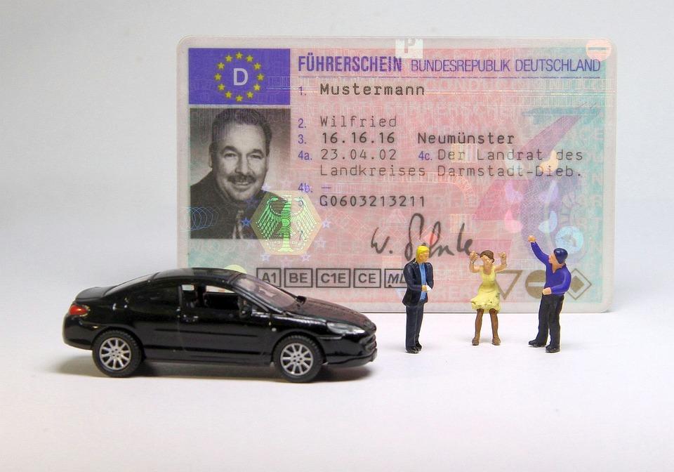 Auto, Driver's License, Miniature Figures
