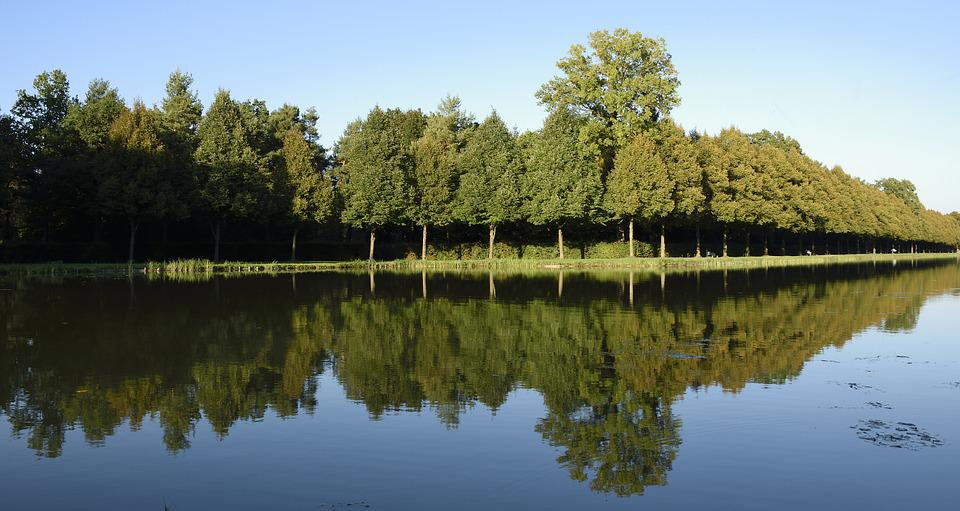 Castle Park, Schlossgarten, Mirroring, Reflection