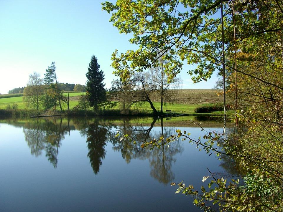 Pond, Water, Mirroring, Nature, Idyll, Sky, Blue