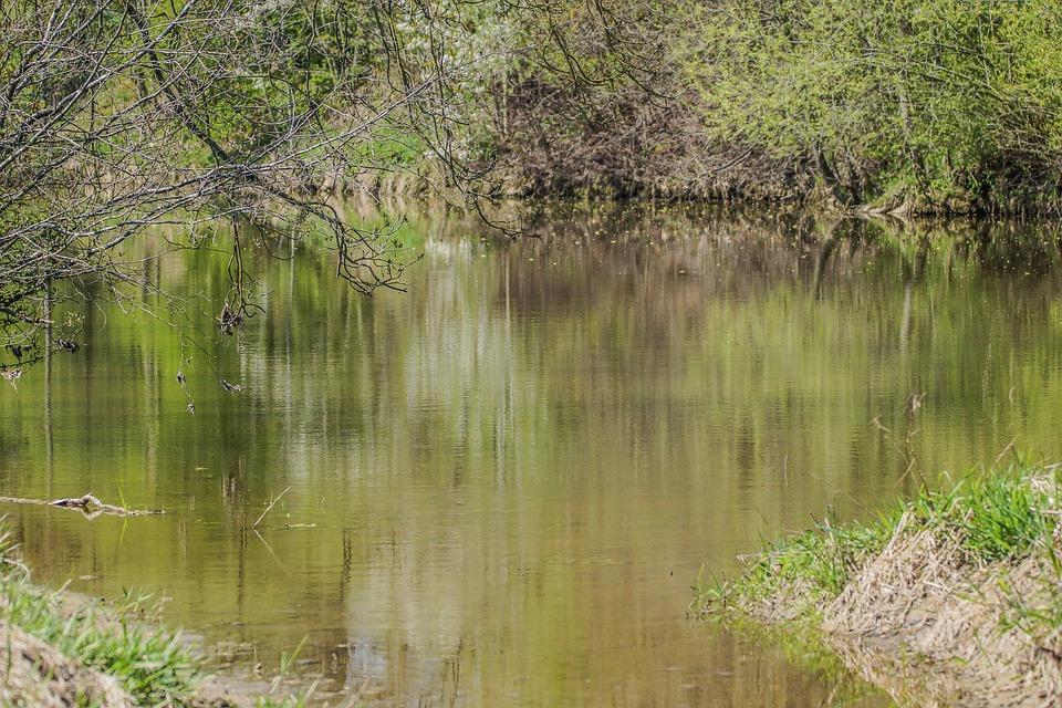 Jagst, River, Nature, Mirroring, Landscape