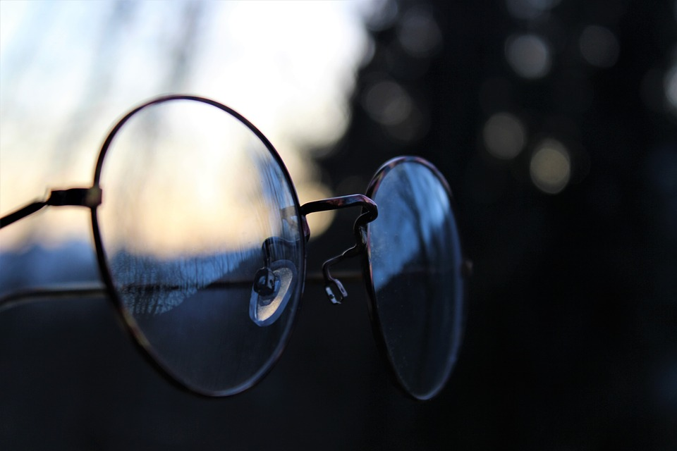 Glasses, Retro, Vintage, Forest, Lenses, Sun, Mirroring
