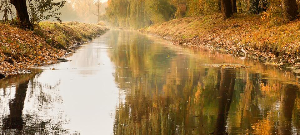 River, Mirroring, Bridge, Niederrhein, Water, Forest