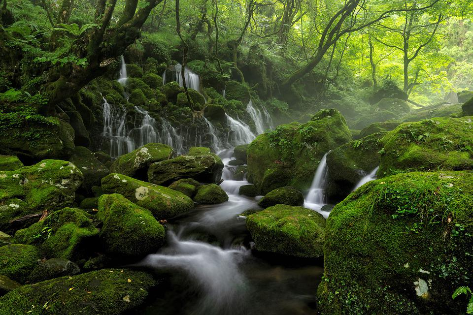 River, Stream, Cascades, Water, Spring, Fog, Mist, Rock