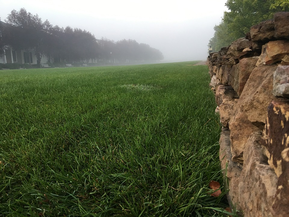 Field, New Town, Stones, Stone Wall, Morning, Fog, Mist