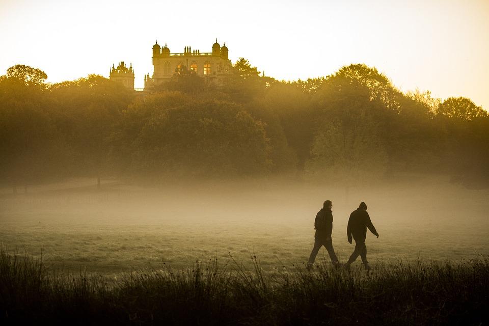 Outdoors, Mist, Walking, Fog, Nature, Landscape, Trees
