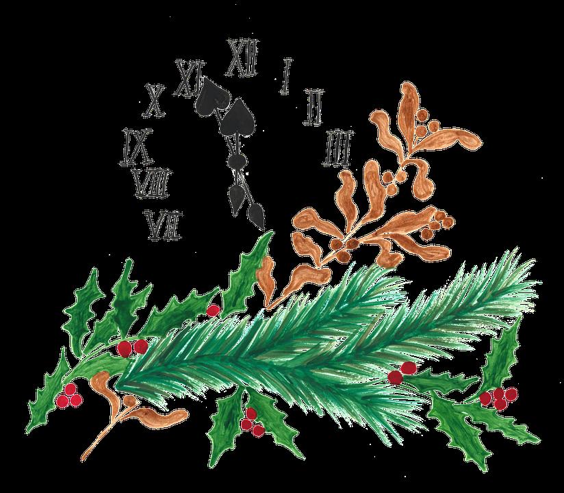 New Year Day, New Year, Christmas, Mistletoe, Needles