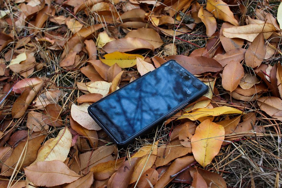 Mobile Phone, Autumn, Lost, Technology, Phone, Leaves