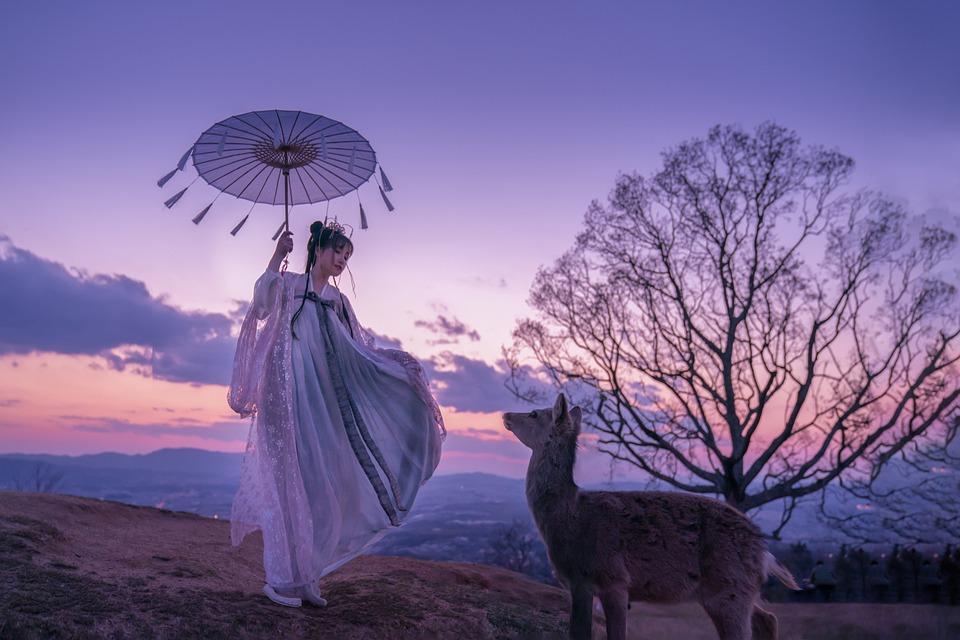 Asian Woman, Woman, Girl, Model, Deer, Japanese Woman