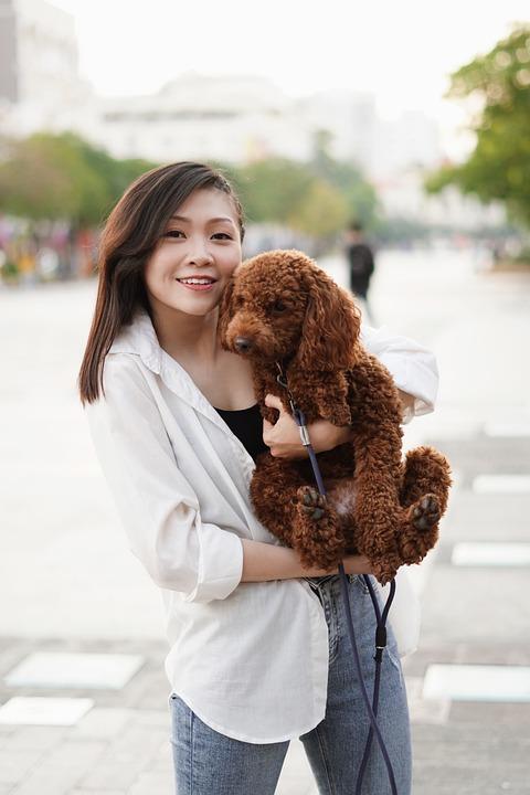 Woman, Model, Portrait, Pose, Dog, Pet, Animal, Style