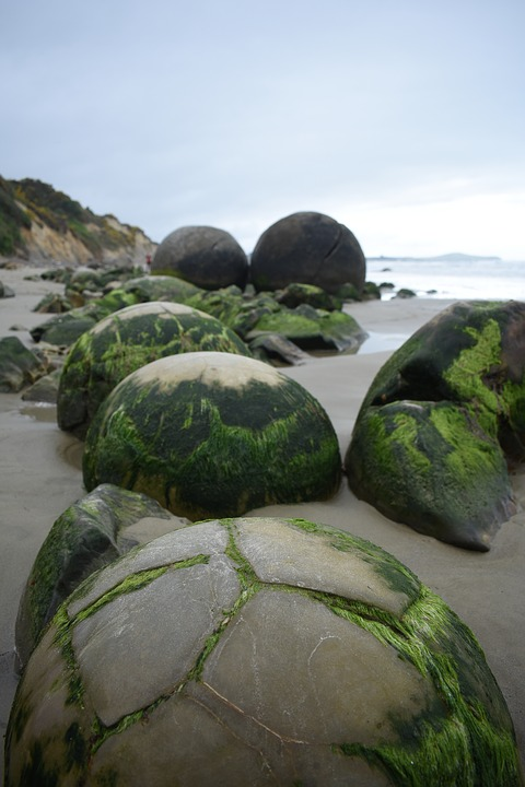 Nature, Moeraki, Boulders, New Zealand, Beach, Seashore