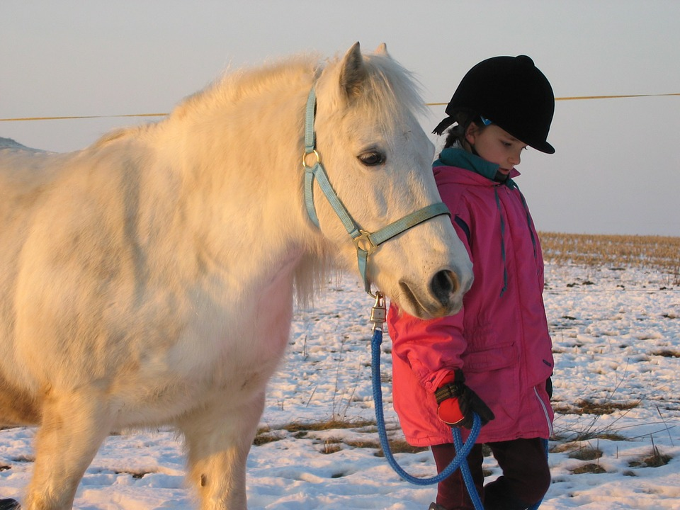 Pony, Mold, Little Girl, Sun, Child, Cute