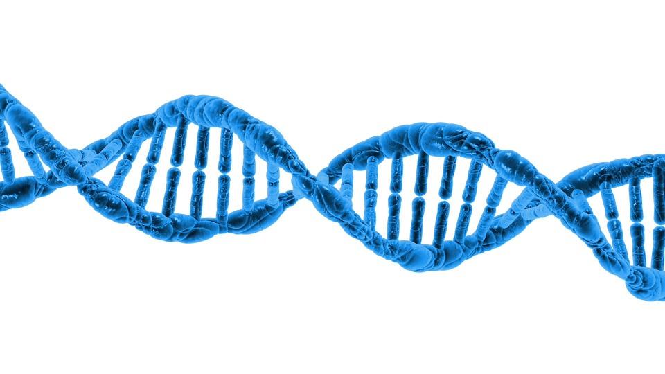 Dna, Biology, Science, Helix, Protein, Molecule