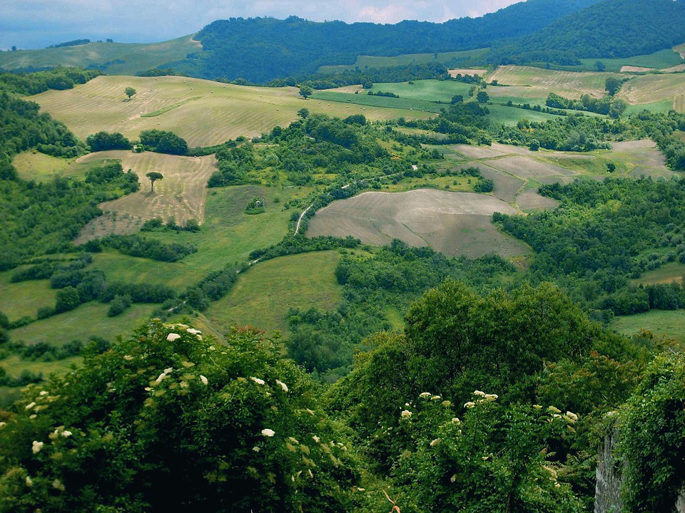 Landscape, Green, Campaign, Italy, Nature, Molise
