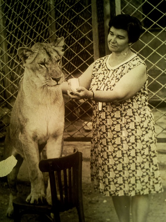 Mom, Lioness, Interesting, Women, History, Old Photo
