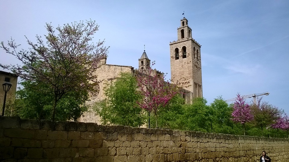 Monastery, Tapia Of The Monastery, Blooming Trees