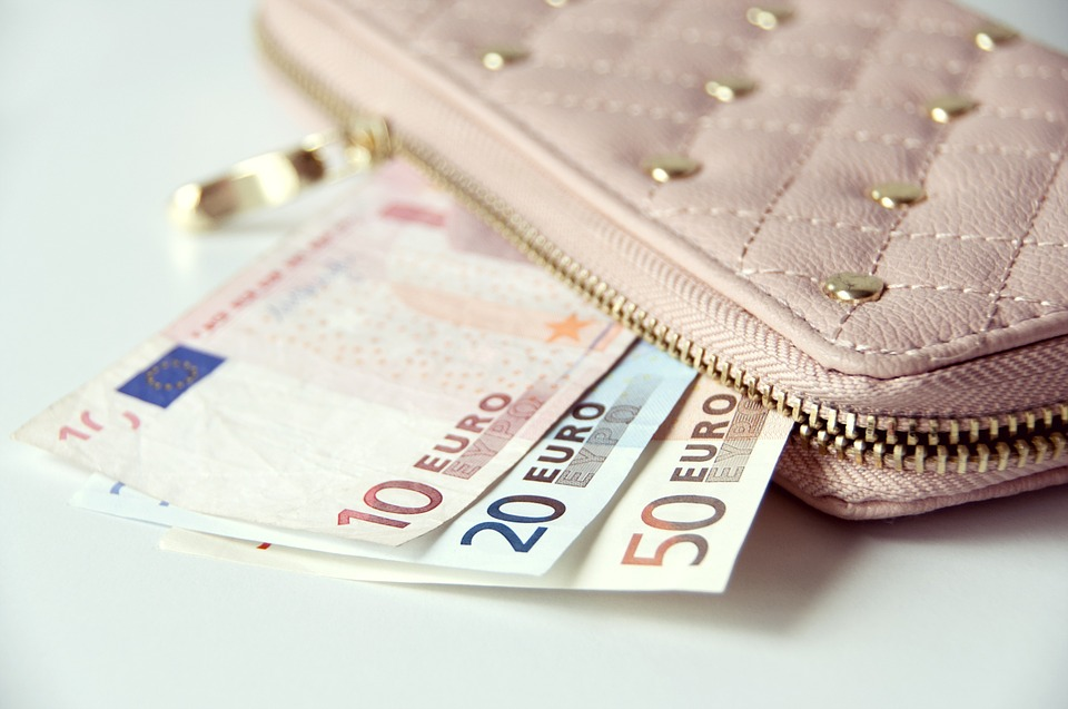 Wallet, Money, Banknotes, Euro, Cash