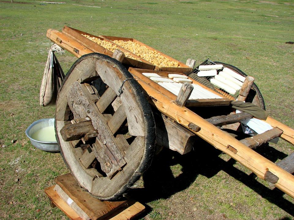 Car, Wheel, Cheese, Cheese Drying, Mongolia, Step