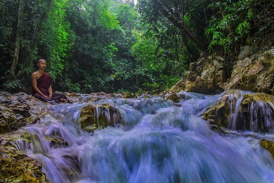 Theravada Buddhism, Monk At Nature, Meditation