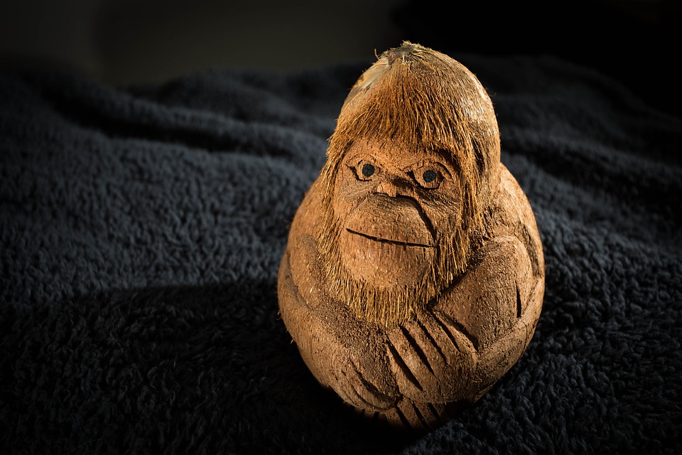 Monkey, Carving, Carved, Coconut, Face, Beard, Animal