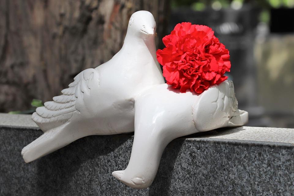 White Doves, Red Carnation, Love, Gravestone, Monument