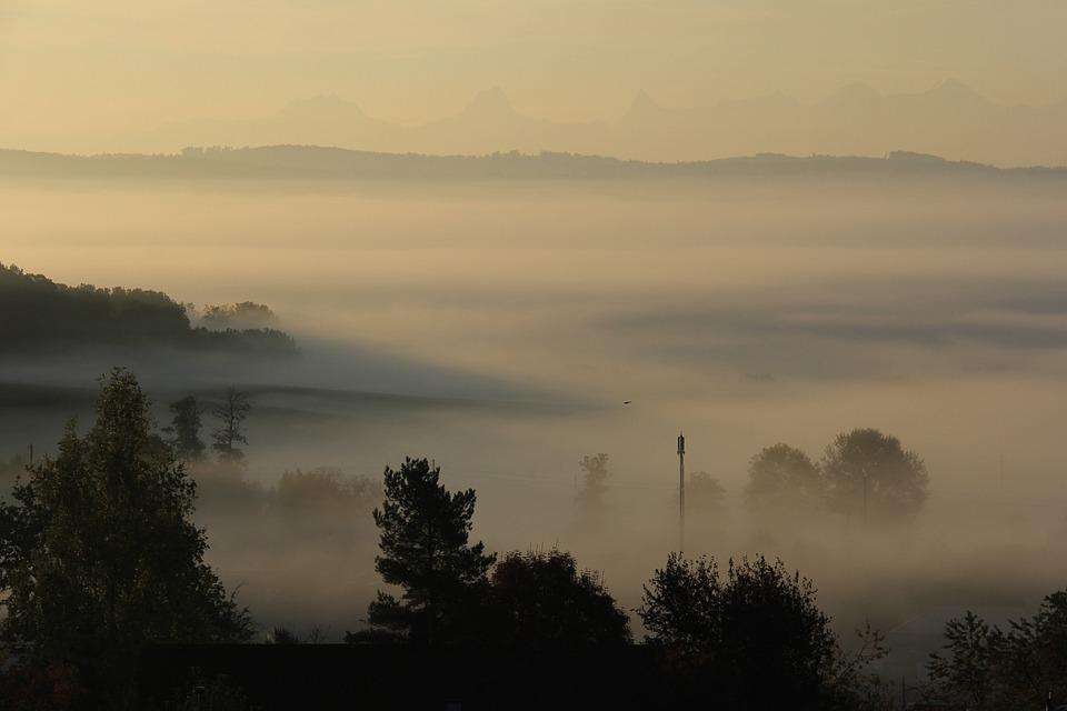 Fog, Mist, Nature, Mood, Mystical, Idyll, Rest