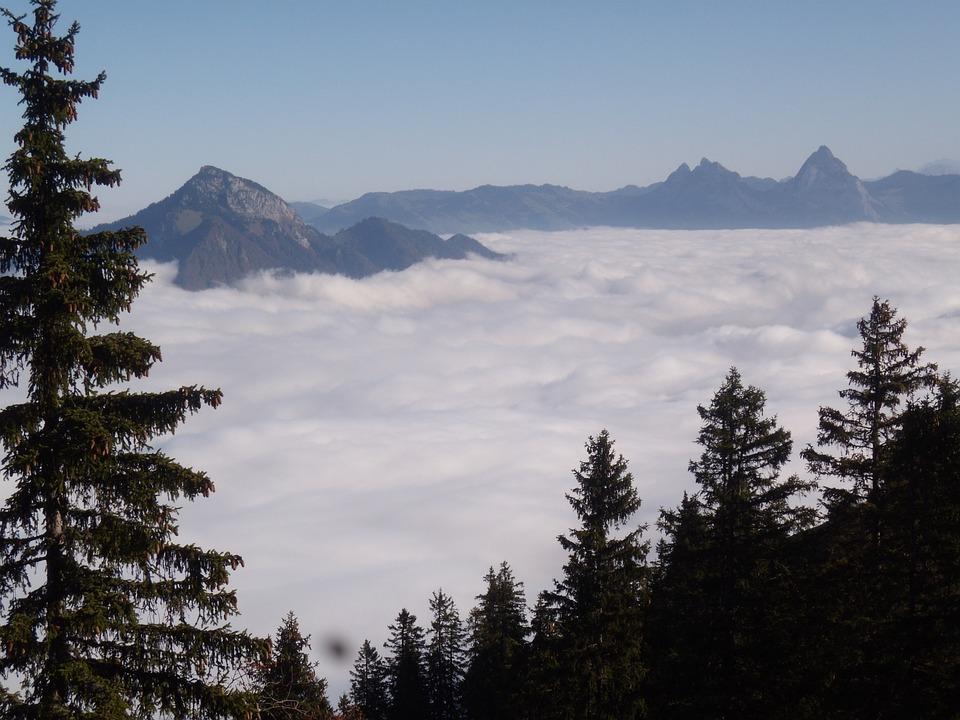 Mountains, Fog, Tree, Mood, Sea Of Fog, Klewenalp