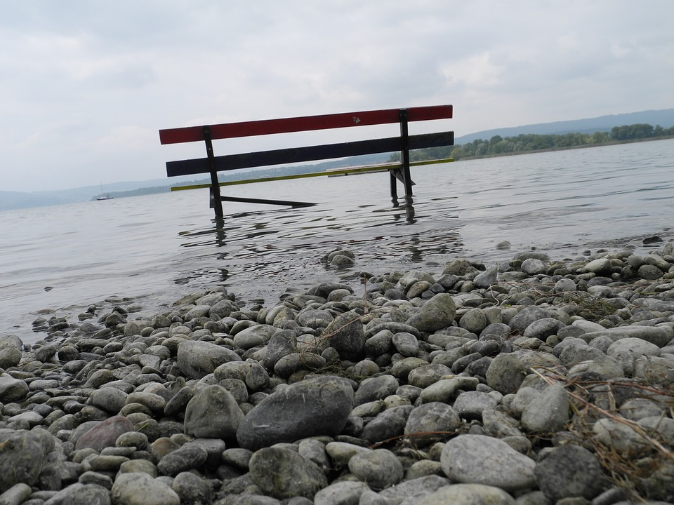 Lake, Silent, Nature, Seat, Bench, Out, Trueb, Mood