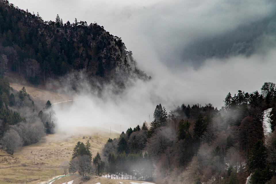Fog, Mountains, Mood, Grenchenberg, Nature, Forest