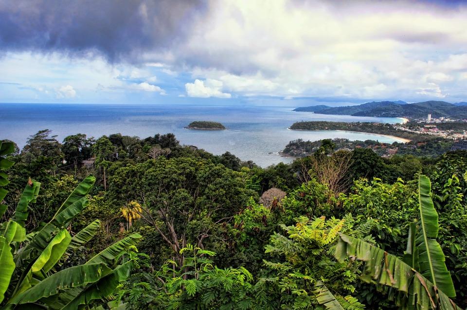 Thailand, Nature, Landscape, Asia, Mood, Plant