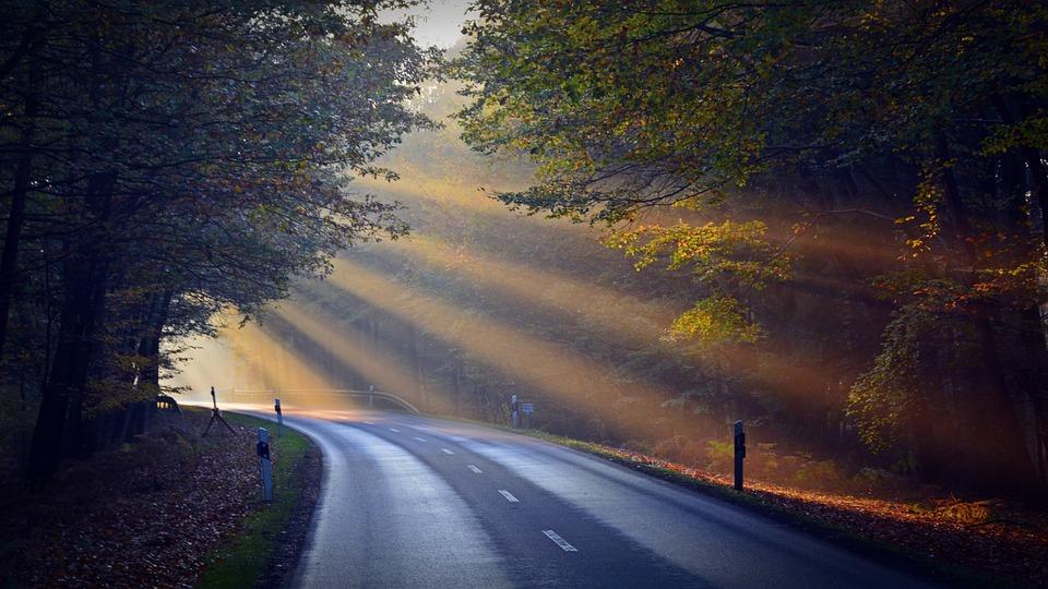 Sunbeam, Forest, Road, Nature, Mood