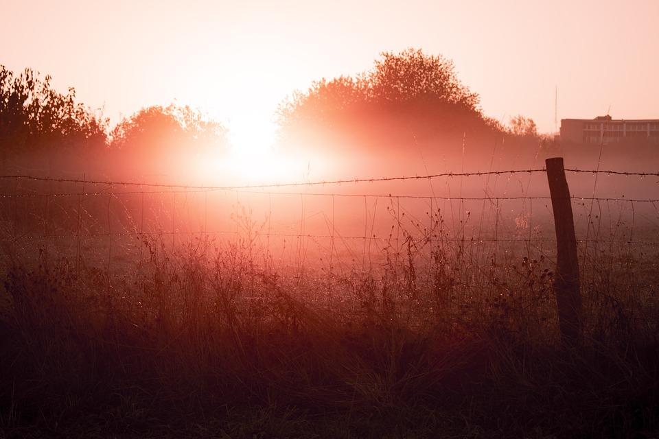 Sunrise, Sun, Fog, Morning Haze, Landscape, Mood