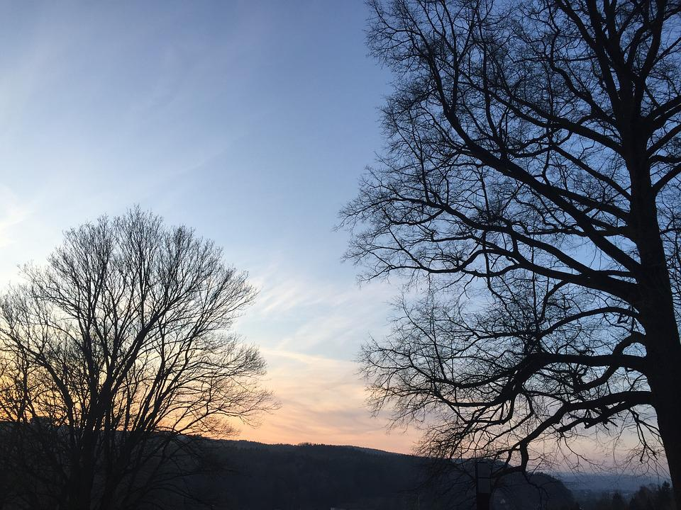 Trees, Sunset, Sky, Romantic, Mood, Abendstimmung