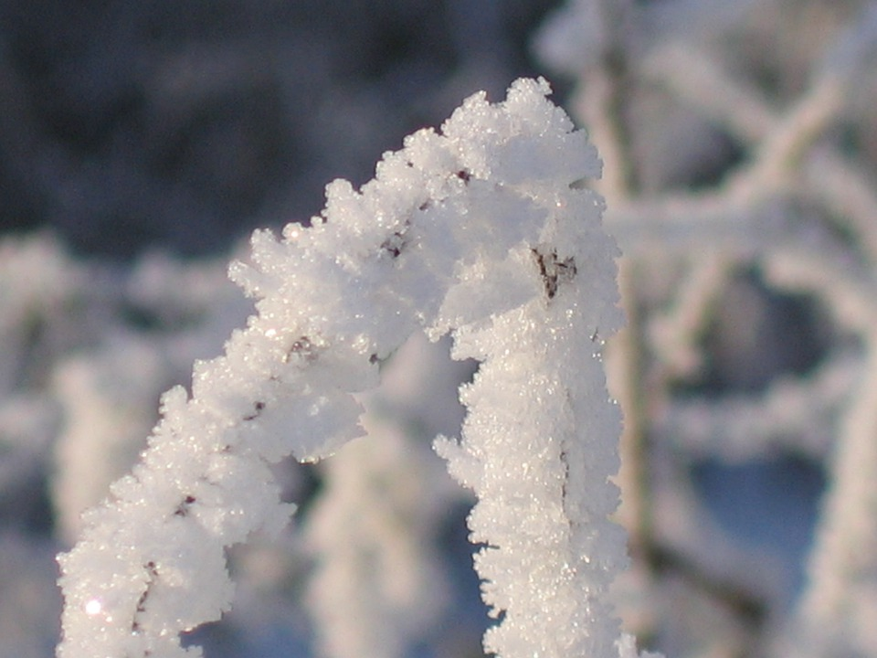Winter, Ice, Cold, Mood, Silent