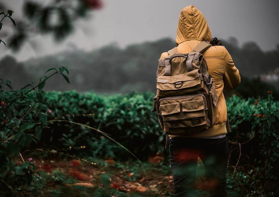 Jacket, Walking, Woods, Greens, Moody, Dark, Forest