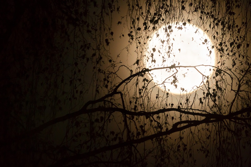 Moon, Silhouettes, Aesthetic, Full Moon, Black