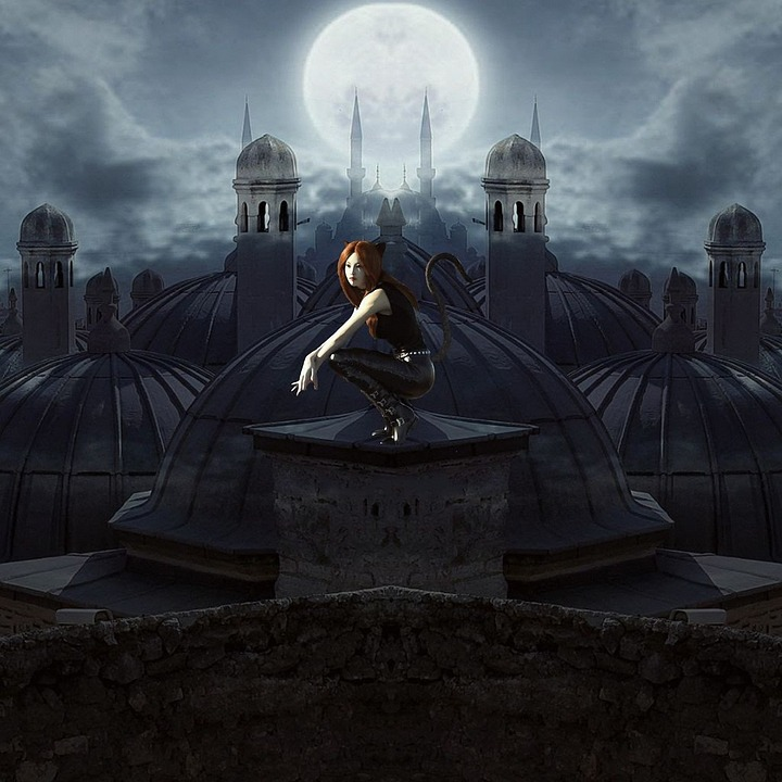 Cat, Roof, Woman, Moon, Night, Fantasy, Roofs, Ghostly