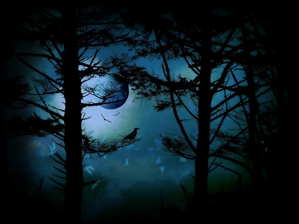 The Edge Of Twilight, Moon, Fantasy, Trees, Silhouette