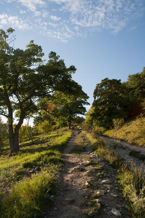 Path, Nature, Magic, Moravia