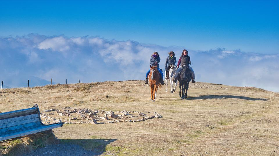 Ride, Reiter, Landscape, Horses, More, Riding Holiday