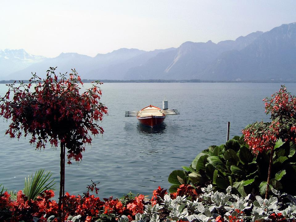 More, Water, Switzerland, Rowing Boat, Flowers