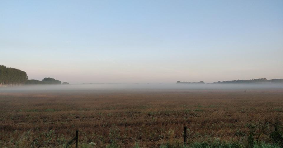 Fog, Pasture, Morning, Landscape, Dutch Landscape