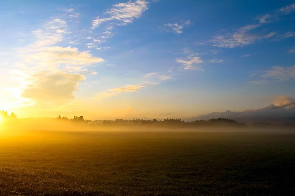 Autumn Morning, Landscape, Morning, Meadow, Autumn Mood