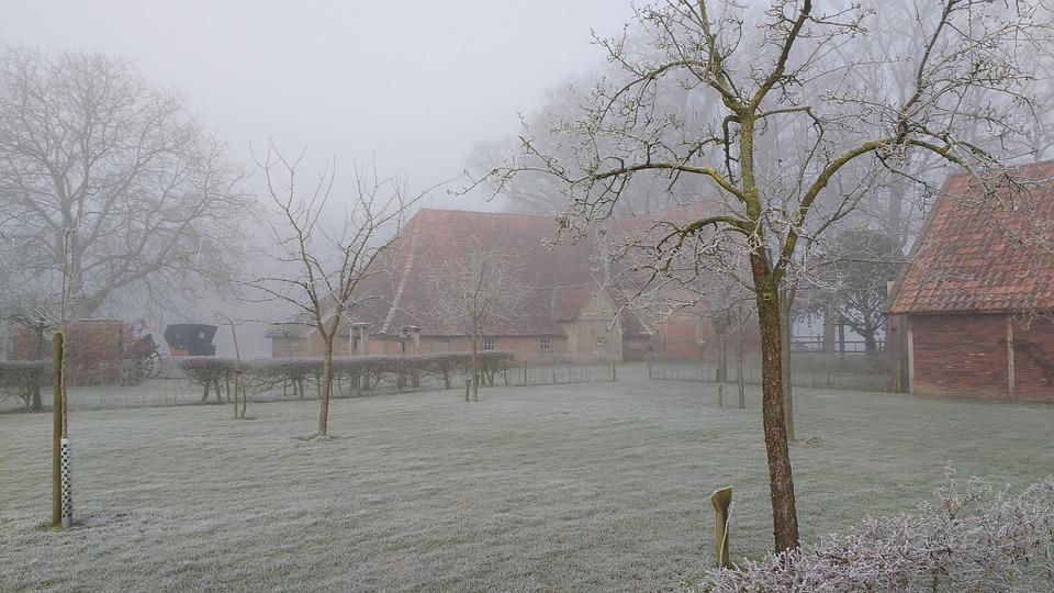 Winter, Dew, Landscape, Dutch Landscape, Morning