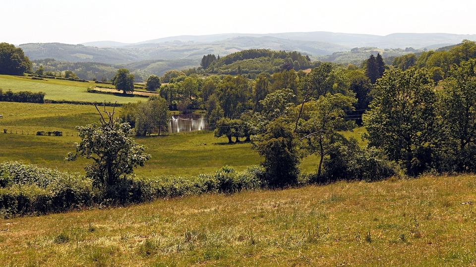 Landscape, Trees, Field, Nature, Green, Morvan