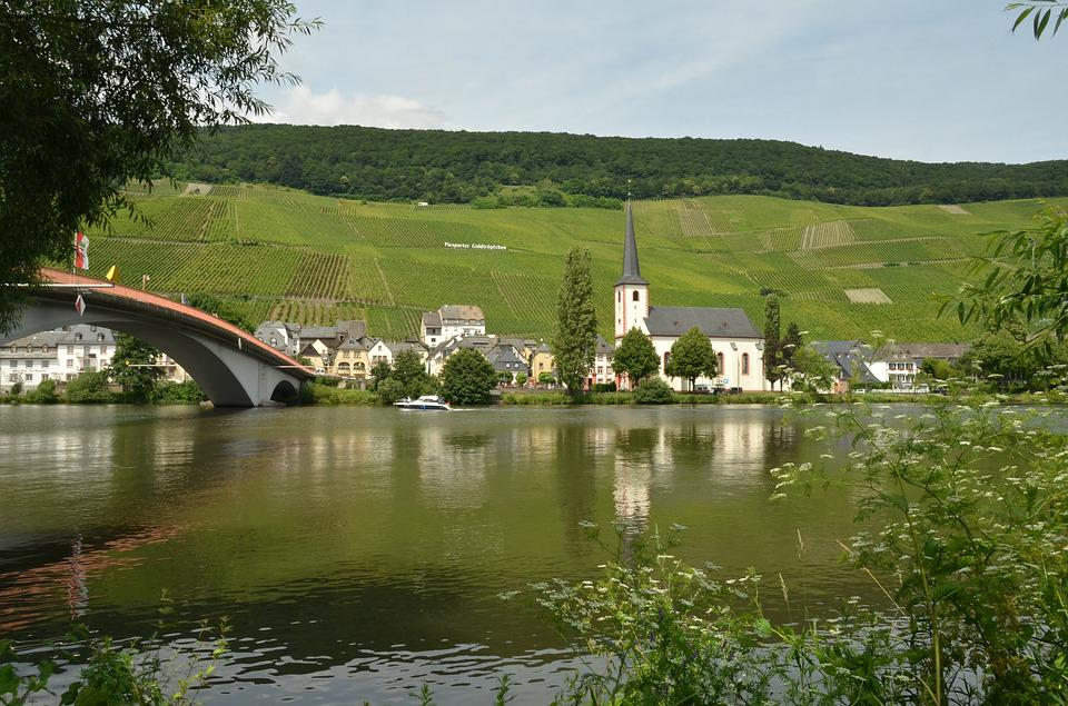 River, Moselle, Wine, Piesport, Germany