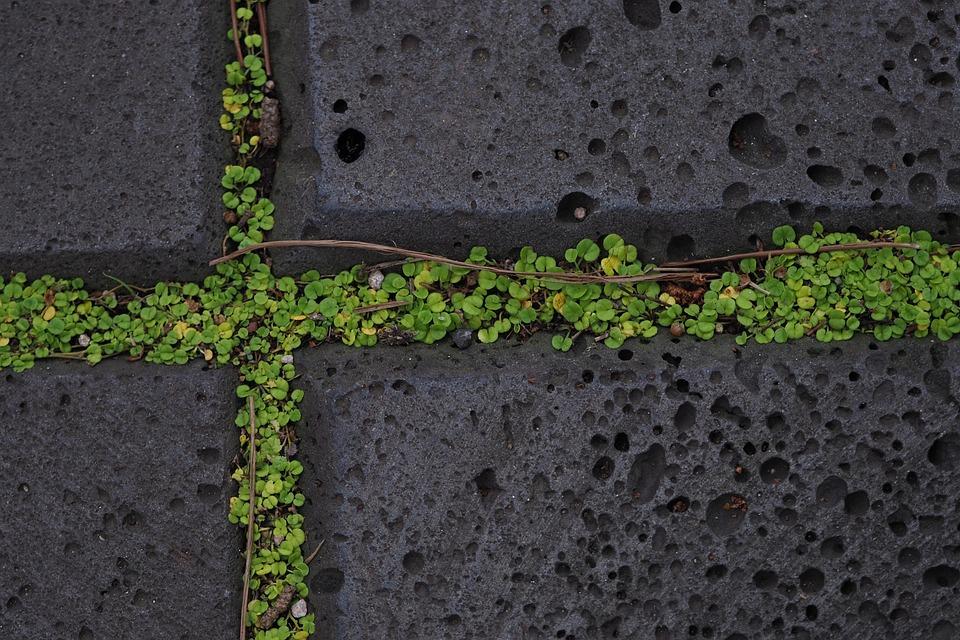 Cross, Stone, Moss