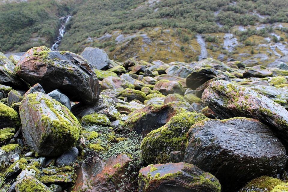 Stones, Moss, Scree, Green, Grey, Moss Covered, Nature